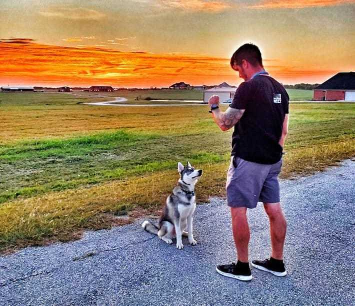 How to Select the Ideal Dog Trainer for Your Dog