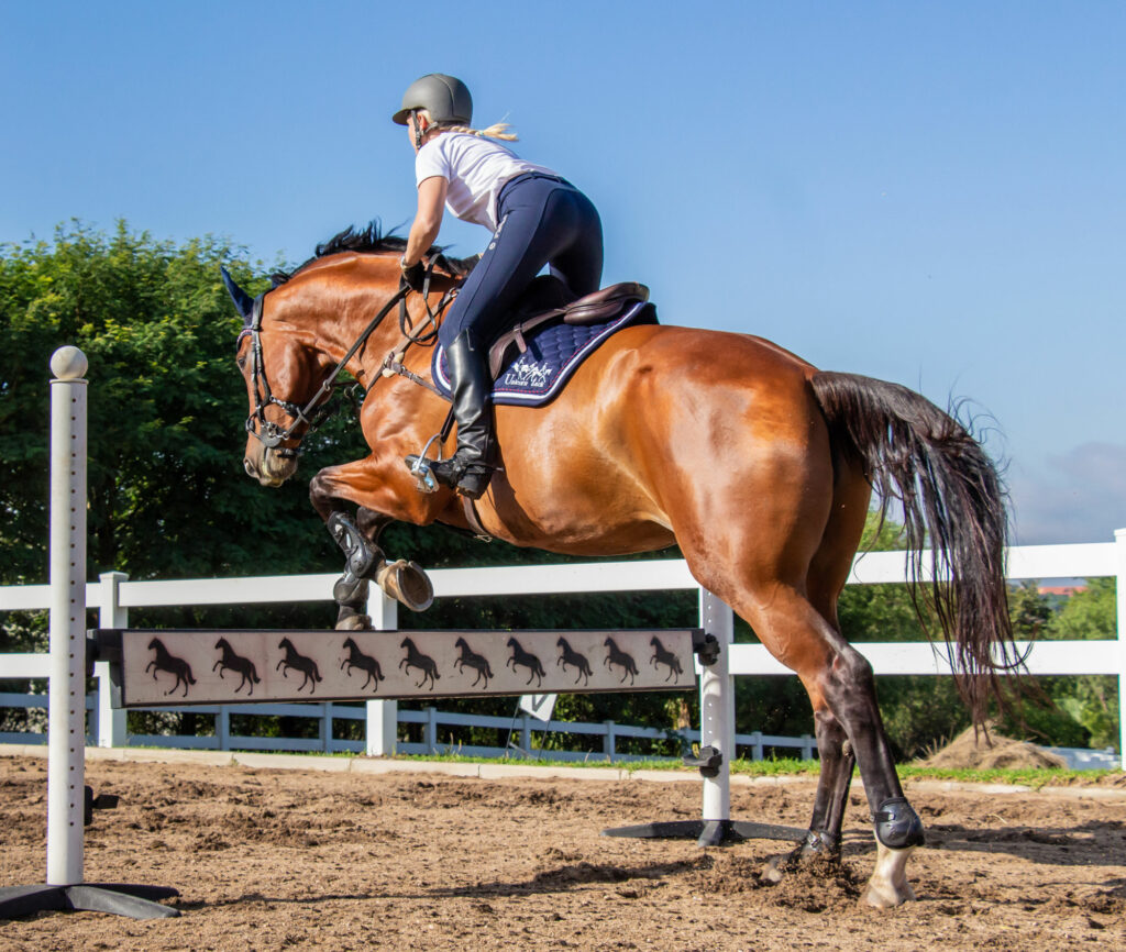 How Your Horse Jumps